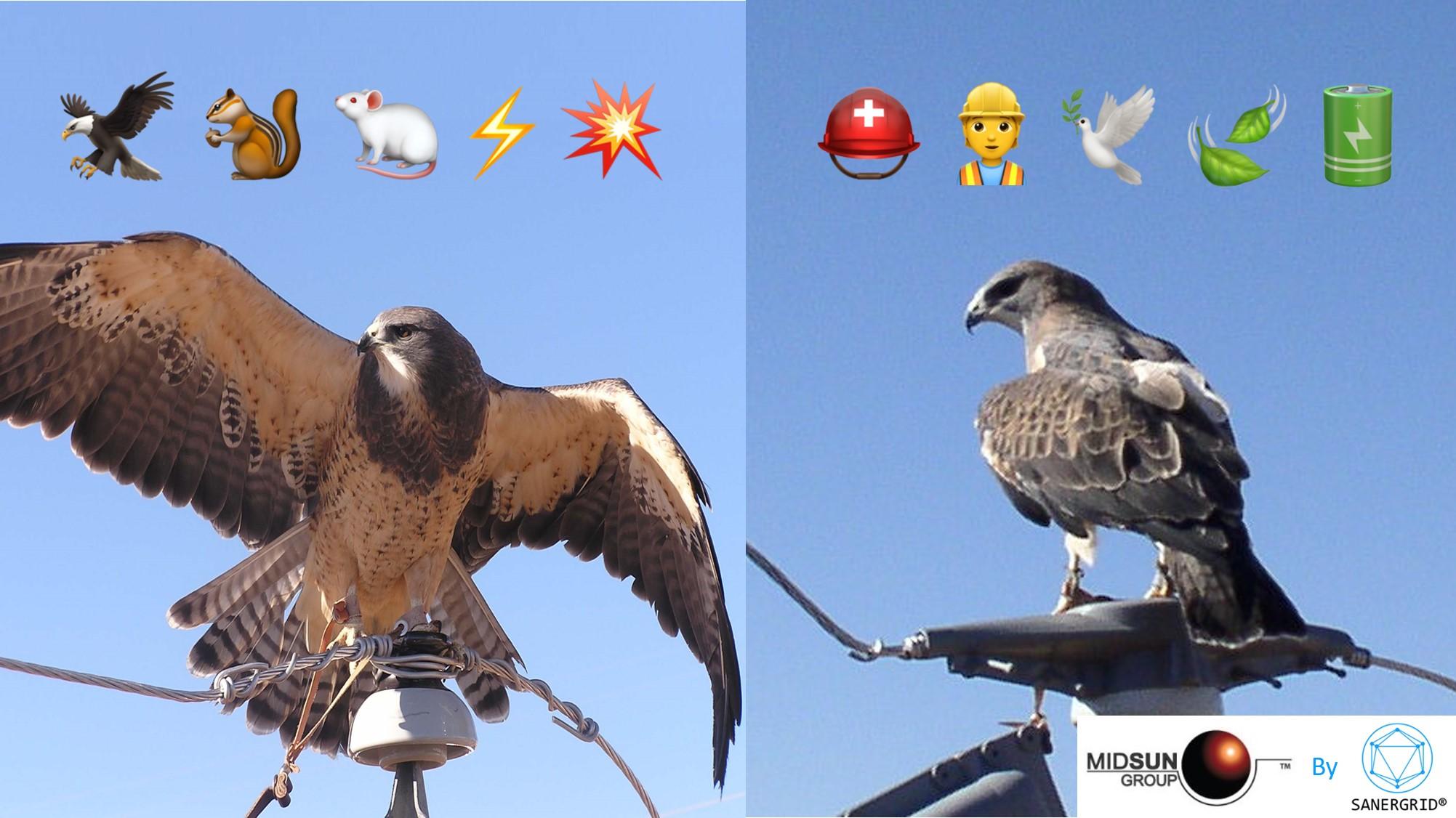 Gamme complète de protection anti intrusion avifaune animale poste haute tension MIDSUN gamme E samergrid